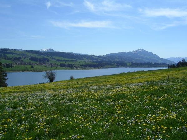 Haus panoramablick in moosbach am see ferien urlaub for Urlaub haus am see