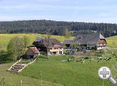 Mooshof - Ferienbauernh