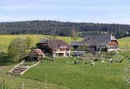 Mooshof - Ihr Ferienbauernhof